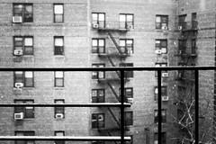 Sprinkles of Snow (thebqe) Tags: newyorkcity windows winter blackandwhite snow fireescape snowing urbanlandscape apartmentbuildings snowyday queensnewyork nycphoto nycwinter blackandwhitenyc nycbuilding jamaicanewyork newyorkphotography newyorkcityphotography typicalnycapartmentbuildings