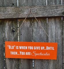 DSC_5113 (ToadHollowNJ) Tags: motivationalquote inspirationalquote paintedwoodsign hangingwoodsign oldiswhenyougiveuppaintedwoodsign reclaimedwoodwallart