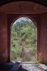 Backyard 1 (emmanuel orbe) Tags: door nature grass contraluz mexico puerta backyard interior indoor acapulco campo patiotrasero