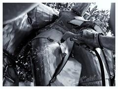 Oscar Guiti; Oscar Gutie; Ibiza; Spain; Steel; Scultpure; Acero; Escultor; Eivissa; Artist;Artista Image by Gato Surez (OscarGuti) Tags: spain artist steel ibiza eivissa scultpure artista acero escultor oscarguiti oscargutie