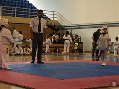 stefanou_15_5_2016_knockdown_146
