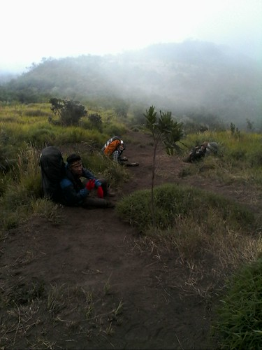 "Pengembaraan Sakuntala ank 26 Merbabu & Merapi 2014 • <a style=""font-size:0.8em;"" href=""http://www.flickr.com/photos/24767572@N00/26557039974/"" target=""_blank"">View on Flickr</a>"