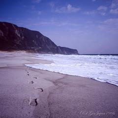 20160320-10 (GenJapan1986) Tags: 2016 fujifilmgf670wprofessional          6x6 film tokyo island travel  japan sea pacificocean landscape beach niijima fujifilmprovia400x