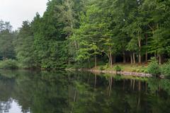 148/2016 Pond (puste66blume) Tags: teich stadtpark limbachoberfrohna alpha58 inesbilder puste66blume 3662016
