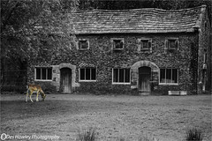 VERY OLD COTTAGES. (Des Hawley Photography) Tags: platinumpeaceaward thegalaxyhalloffame thegalaxystarshof