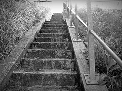 2016-05-14 Villers (35)stairs (april-mo) Tags: blackandwhite stairs steps escalier marches