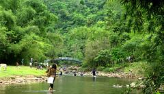 (Sajeeb__) Tags: travel trees white black green water girl forest outdoor ducks bangladesh