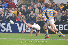 20160521_160611 (Fotos Oro y Chocolate) Tags: club de athletic rugby final hindu nacional bac belgrano clubes nacionaldeclubes belgranoathleticclub finalnacionaldeclubes