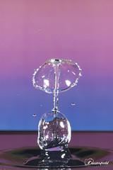 DSC00639 (David.Chesterfield) Tags: art water drops splash