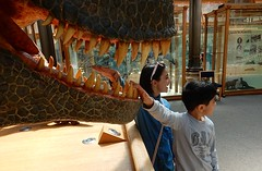 Tempting T Rex (mikecogh) Tags: children fun model head teeth oxford trex tempting tyrannosaurusrex pittriversmuseum
