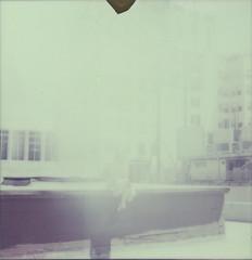 Lauryn polaroid 037Besotted Promises_ (Amandine B. Photography) Tags: pink flowers sky building rooftop nature fleur rose architecture fleurs vintage garden polaroid downtown solitude loneliness chaos pastel dream jardin ciel abandon toit daydream abandonment ville batiment disappear rve rtro disparaitre