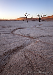 Dead Vlei Drainage Channels (Panorama Paul) Tags: namibia sanddunes deadvlei acaciatrees nikkorlenses namibnaukluftnationalpark nikfilters nikond800 wwwpaulbruinscoza paulbruinsphotography