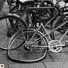 23S16 (photo & life) Tags: street city blackandwhite paris france bike bicycle 35mm square photography europe noiretblanc streetphotography strasbourg squareformat fujifilm fujinon jfl xt1 squarephotography fujinonxf35mmf14r fujifilmxt1 photolife