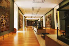 (Stephanie DiCarlo) Tags: travel paris france museum europe louvre thelouvre