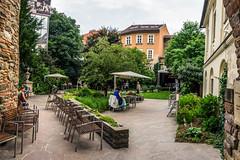DSC06817-Edit (Luk S.) Tags: park city urban nature june garden private photography town photographie sony slovensko slovakia exploration bratislava jun zahrada slovakrepublic slovak naturelovers staremesto 2016 slovenskarepublika sonyalpha sukromne denotvorenychparkovazahrad