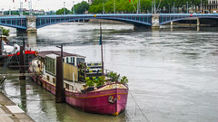 Nid d Amour (Jan Herremans) Tags: bridge france river lyon houseboat janherremans june2016