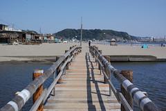 #bridge #namerigawa #beach #yuigahama (unz) Tags: foveon sigma dp2q dp2quattro eyefi
