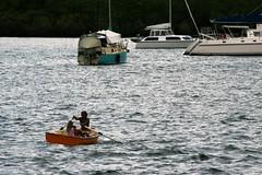 heading home ---- IMG_4334 (harry de haan) Tags: harrydehaan palmcove qld fnq australia queensland wetseason driftresort wet