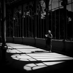 La Lectora (Antonio Jimnez Falcn) Tags: fujifilm fotography fujix30 fuji fujista fujifilmx30 fujistas fotografia foto fotocallejera fujifimlxseries fujixseries fujifilmxseries photo blackandwhite black blancoynegro white whiteandblack blanco negro negroyblanco fotografo luz light street streetphoto streetphotography streetart streetfoto callejera callejero calle madrid capital espaa spain espana europa europe