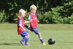 Feriencamp Neumnster 28.07.16 - b (26) (HSV-Fuballschule) Tags: hsv fussballschule feriencamp neumnster vom 2507 bis 29072016