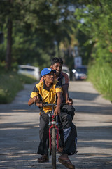 Friends on bicycle 6182 (shahidul001) Tags: people man male men males young youth smile smiling happy happiness srilankan srilankans bicycle ride riding road vertical color colour srilanka southasia asia drik drikimages