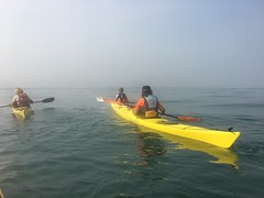 IoW paddle 28 August 2016