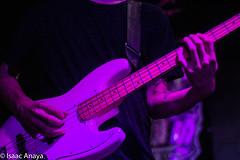 Peregrino (Isaac.Anaya) Tags: music concert vanessa zamora charlie rodd instruments boemia
