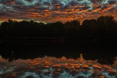 Rorschach Test (mclcbooks) Tags: landscape lakescape seascape lake water reflections sunrise dawn daybreak clouds fall autumn trees lakechatfield colorado silhouettes