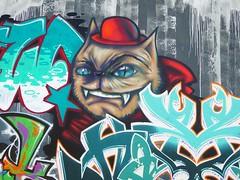 Graff in Grenoble (brigraff) Tags: streetart art grenoble painting arte drawing spray panasonic urbanart aerosol sprayart arturbain artedelacalle tz60 panasonictz60 brigraff
