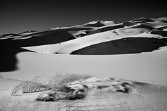 Great Sand Dunes NP (wingit1x) Tags: winter bw snow nationalpark nikon colorado sanddune d3x