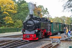 Ghren auf Rgen - Rasender Roland (www.nbfotos.de) Tags: eisenbahn zug bahnhof dampflok lokomotive lok mecklenburgvorpommern rasenderroland dampfeisenbahn ghren inselrgen schmalspurbahn 9917840