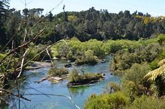 Riviere Waikato à Taupo