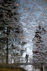 Reflet de Bruxelles (www.vanbastelaer.be) Tags: bridge shadow sky brown reflection tree art silhouette modern painting buzz real creativity photography photo europa europe experimental mood view belgium belgique belgie emotion upsidedown expression contemporaryart hiver fineart creative picture streetphotography bruxelles boom ombre peinture relief reflet ciel vision stunning pont reality instant create capitale brug brussel arbre vue impression oeuvre alternative brun feuille bruin cycliste tronc realiteit clairobscur belge 2014 unconventional rel rflexion melancolic melancolie atmosphre hoofdstad ralit melancolique