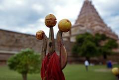 Near & the far - Gangaikonda Cholapuram temple (me suprakash) Tags: india tamilnadu gangaikondacholapuram differentialfocus indianheritage cholatemple southindiantemple tamilnadutemple ancientindiantemple thetridentlemons