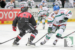 "DEL15 Kölner Haie vs. Augsburg Panthers 10.12.2014 057.jpg • <a style=""font-size:0.8em;"" href=""http://www.flickr.com/photos/64442770@N03/15842014540/"" target=""_blank"">View on Flickr</a>"