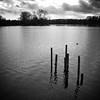 Tringford Reservoir (Shen_Stone) Tags: leica 2 england bw film monochrome grain hertfordshire digilux reservoirs tringford shenstone