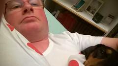 A peaceful feeling (verbeek_dennis) Tags: nokia dachshund tax selfie kaapo dashond myrkoira  gravhund jazvek lumia830 tksa