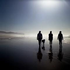Three Ladies and a Doggy (Aaron Bieleck) Tags: ocean reflection 6x6 film beach silhouette oregon analog square nw 120film pacificnorthwest oregoncoast manzanita hasselblad500cm kodakportra160