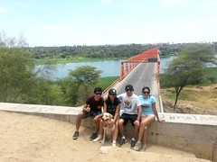 Valle del Chira- Sullana. . . Buenos Amigos! (erikper) Tags: boy dog amigos sol girl weekend puentes perros turismo caminata peruvian parejas findesemana buenosamigos ríochira