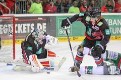 "DEL15 Düsseldorfer EG vs. Augsburg Panthers 28.12.2014 104.jpg • <a style=""font-size:0.8em;"" href=""http://www.flickr.com/photos/64442770@N03/16194401601/"" target=""_blank"">View on Flickr</a>"