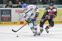 """DEL15 Kšlner Haie vs. Augsburg Panthers • <a style=""""font-size:0.8em;"""" href=""""http://www.flickr.com/photos/64442770@N03/16300474671/"""" target=""""_blank"""">View on Flickr</a>"""