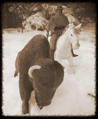 Chief Tankua, Bison Hunt (atjoe1972) Tags: horse snow gabriel vintage toys actionfigure buffalo hunting retro nativeamerican pack western marx bison pioneer wildwest mattel frontier loneranger oldwest johnnywest warpath bigjim atjoe1972 chieftankua