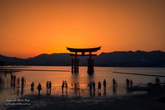 The Great Torri (heng.steven) Tags: japan miyajima  torri itsukushima  itsukushimajinja  japanlandscape japansunset japantorri