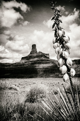 Moab_Utah_untitled_0370_05-08-16-tewksbury-Edit
