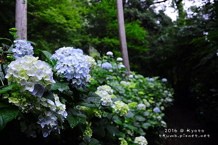 201606生日旅25.JPG