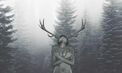 ANTLERS (XAEVO DELUXE) Tags: winter sky bw woman white jason black hot cold tree sexy art girl monochrome forest poetry outdoor deluxe antlers teen fibonacci astoria teenager crux jasoncrux xaevo xaevodeluxe