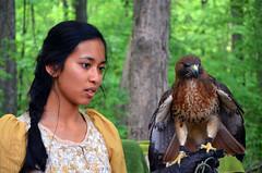 DSC_3592 (hellotristan) Tags: girls birds festival nikon hawk fair medieval owl lamb prey renaissance nikonphotography nikond7000