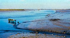 Rio Tejo   Tagus river   Fleuve Tage   Fiume Tago   Ro Tajo     (Antnio Jos Rocha) Tags: portugal rio gua barco natureza internacional tejo tranquilidade montijo aguarela rework serenidade marbaixa