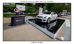 P6080002 (Roberto Silverio) Tags: italy rain torino piemonte motorshow penf parcodelvalentino salonedellauto olympuscamera zuikolens robertosilverio