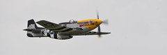 """P-51D Mustang """"Never Miss"""" (albionphoto) Tags: usa reading kate pa b17 worldwarii mosquito corsair mustang fifi dday flyingfortress b29 superfortress maam dehavilland p51d"""